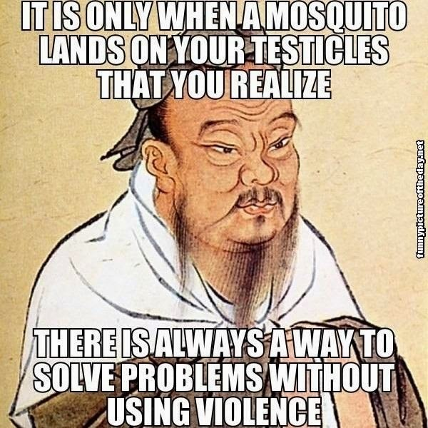 Mosquito-Lands-On-Testicles-Solve-Problems-Without-Violence-Funny-Wise-Confucius-Meme