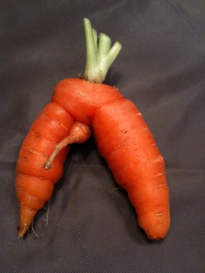Carrot with a dick.