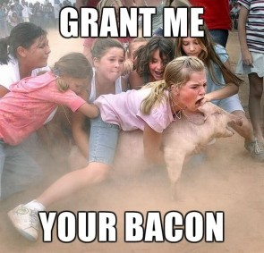 grant me your bacon - pig wrestling