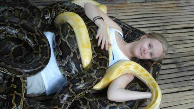 snakes massage girl