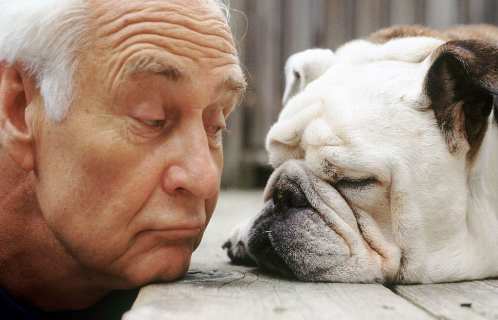 old guy and dog