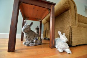 Bunnies can actually be made from dust.
