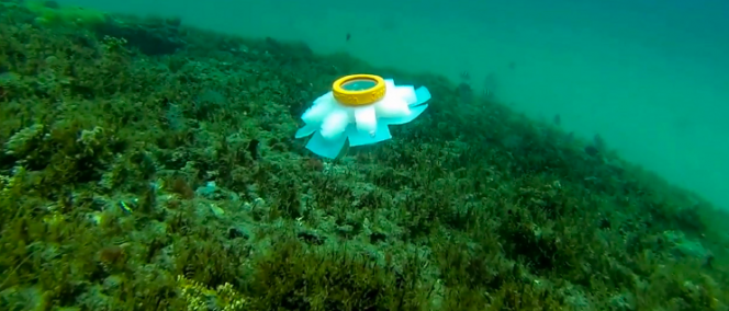 Florida Atlantic University, Robot Jellyfish, Coral Reef, Unknownlist