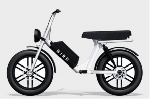 Bird Is Going To Expand Its Fleet With A Two Person Moped?